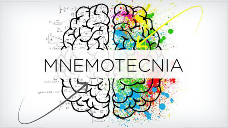 Talleres y juegos de NEURÓBICA-WORKABILITIES * Cómo desarrollar una súper memoria - Modalidad VIP personalizada o grupal/empresarial